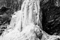 Frozen Hayden