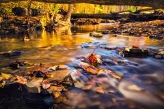 Long Autumn Exposure