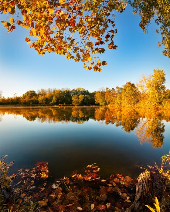 Heron Pond Autumn ISO:100 - f/6.3 - 10mm - 1/160 sec